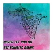 Never Let You Go (Remix) by BeatsInBits