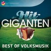 Die Hit Giganten Best Of Volksmusik von Various Artists