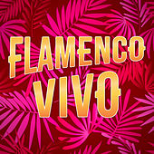 Flamenco Vivo von Various Artists