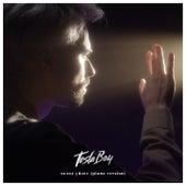 Холод уйдёт (Piano Version) de Tesla Boy