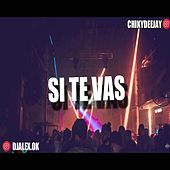 Si Te Vas by DJ Alex