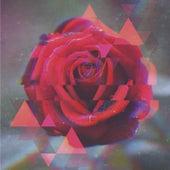 Rose de Wad