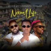Normal Life de Decoo Jay