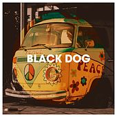 Black Dog by 70s Love Songs, Mo' Hits All Stars, The Party Hits All Stars