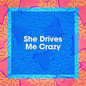 She Drives Me Crazy by Top 40 Hits, 80's Love Band, The Party Hits All Stars