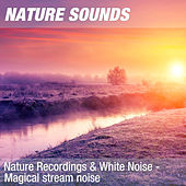 Nature Recordings & White Noise - Magical stream noise by Nature Sounds (1)
