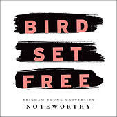 Bird Set Free di BYU Noteworthy