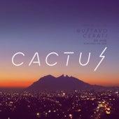 Cactus (En Vivo en Monterrey) de Gustavo Cerati