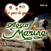 Vol. 6 Porque Te Quiero de Aguamarina