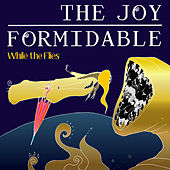 While the Flies (acoustic) von The Joy Formidable