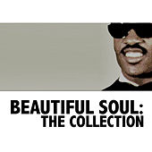 Beautiful Soul: The Collection de Various Artists