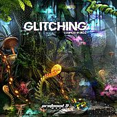 Glitching von Various Artists