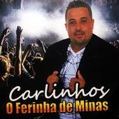 O Ferinha de Minas von Carlinhos
