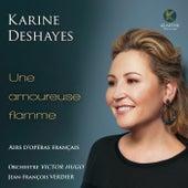 Une amoureuse flamme de Karine Deshayes