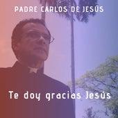 Te Doy Gracias Jesús by Padre Carlos de Jesùs