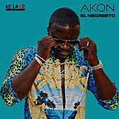 El Negreeto by Akon