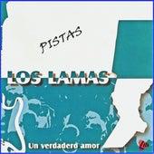 Pistas un Verdadero Amor de Los Lamas