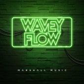Wavey Flow de Marshall Music