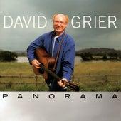 Panorama de David Grier