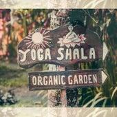 Organic Garden by Yoga Shala