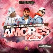 Amores Falso von Fonzeka X Jmiel