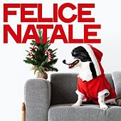 Felice natale by Various Artists