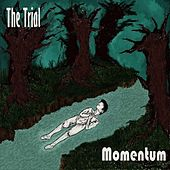 Momentum by Trial