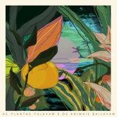 As Plantas Falavam e Os Animais Bailavam by Victor Olivatti