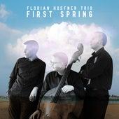 First Spring de Florian Hoefner Trio