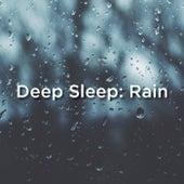 Deep Sleep: Rain by Relaxing Rain Sounds