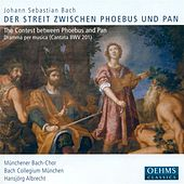 Bach, J.S.: Geschwinde, Ihr Wirbelnden Winde by Various Artists