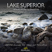 Lake Superior - Waves On Rocky Shoreline de Tim Nielsen