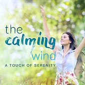 The Calming Wind: a Touch of Serenity de Various Artists