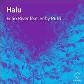 Halu de Echo River