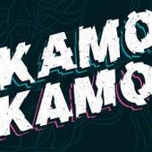 Kamo Kamo de Fat Freddy's Drop