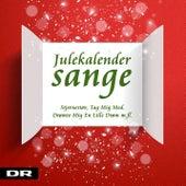 Julekalendersange - Stjernestøv, Tag Mig Med, Drømte Mig En Lille Drøm m.fl. by Various Artists