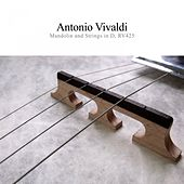 Mandolin and Strings, Rv425 de Antonio Vivaldi