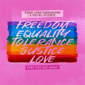 Pray the Gay Away by Terri Lyne Carrington
