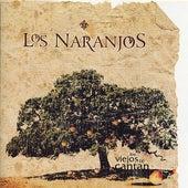 Los Naranjos by Los Naranjos