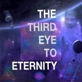 The Third Eye to Eternity de Duke
