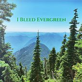 I Bleed Evergreen by The Olson Band