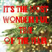 It's the Most Wonderful Time of the Year von Various Artists