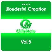 Wonderful Creation, Vol.5 de Various Artists