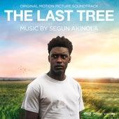 The Last Tree (Original Motion Picture Soundtrack) de Segun Akinola