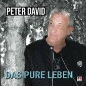 Hitmix Das pure Leben von Peter David