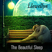The Beautiful Sleep by Llewellyn