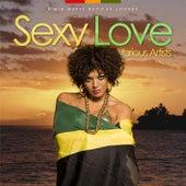Sexy Love - R'n'b Meets Reggae Lovers by Various Artists