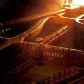 Cicatriz (Live Session) by Deise Jacinto