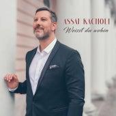 Weisst du wohin by Assaf Kacholi