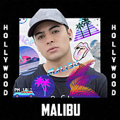Hollywood by Malibu
